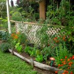 Seasonal Planting Guide